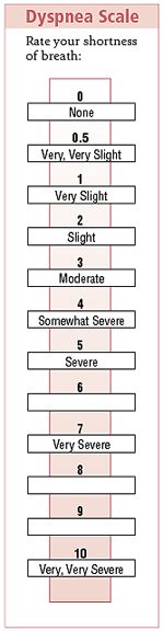 Dyspnea scale to rate shortness of breath: 0 None, 1 Very, very slight, 2 Slight, 3 Moderate, 4 Somewhat severe, 5 Severe, 6 blank, 7 Very severe, 8 blank, 9 blank, 10 Very, very severe.